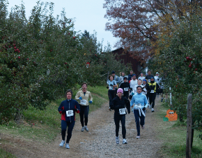Run for the Apples at Pine Tree Apple Orchard
